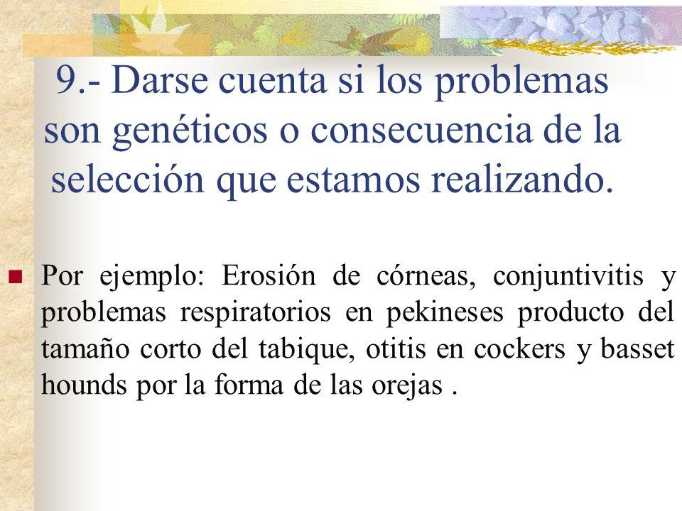 9.- Darse cuenta si los problemas son genéticos o consecuencia de la selección que estamos realizando.