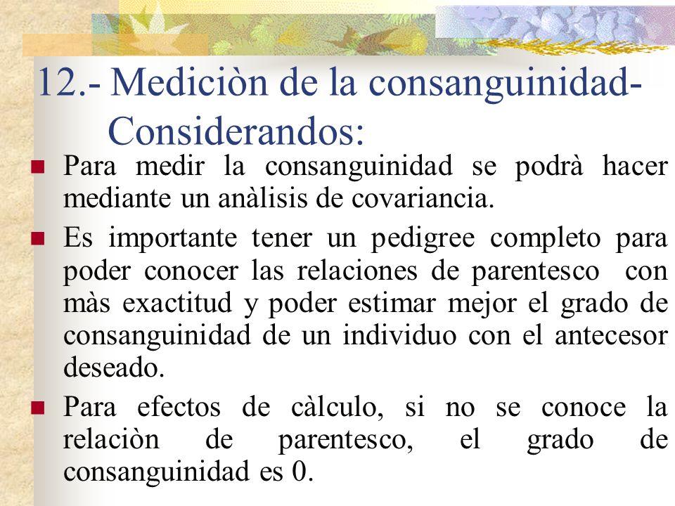 12.- Mediciòn de la consanguinidad- Considerandos: