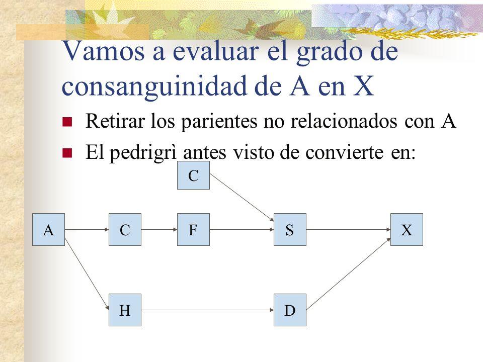 Vamos a evaluar el grado de consanguinidad de A en X