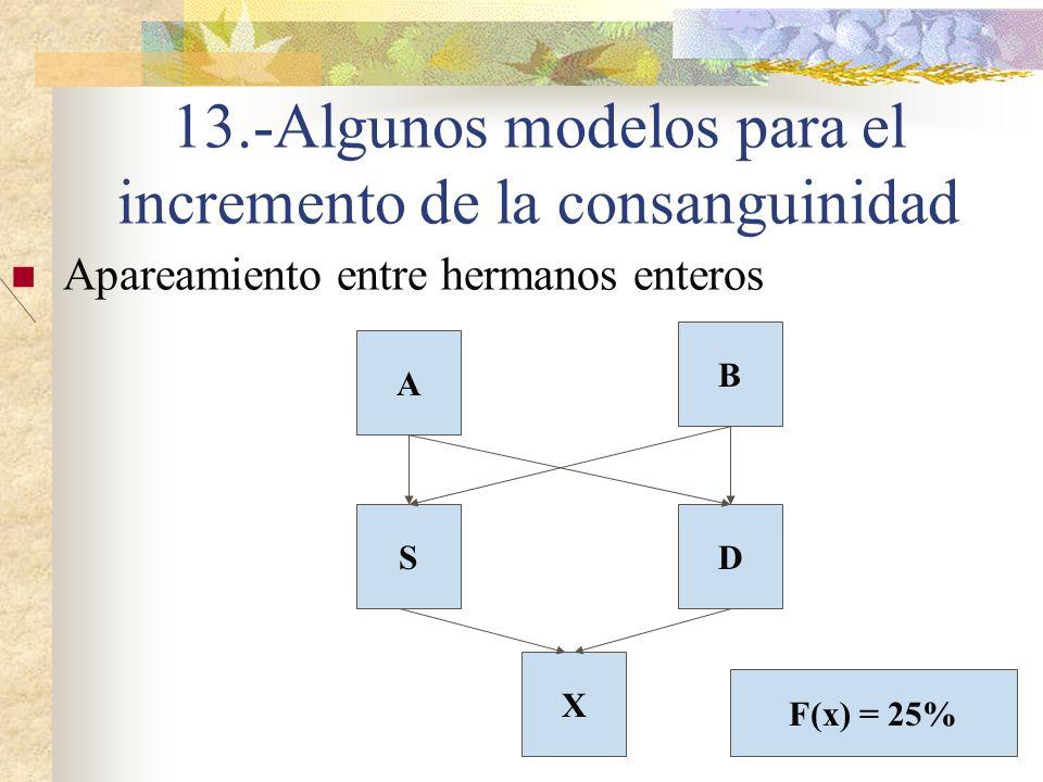13.-Algunos modelos para el incremento de la consanguinidad