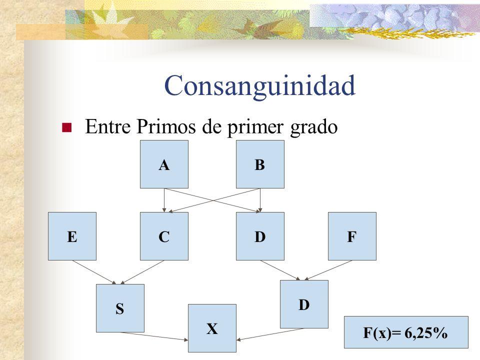 Consanguinidad Entre Primos de primer grado A B E C D F D S X