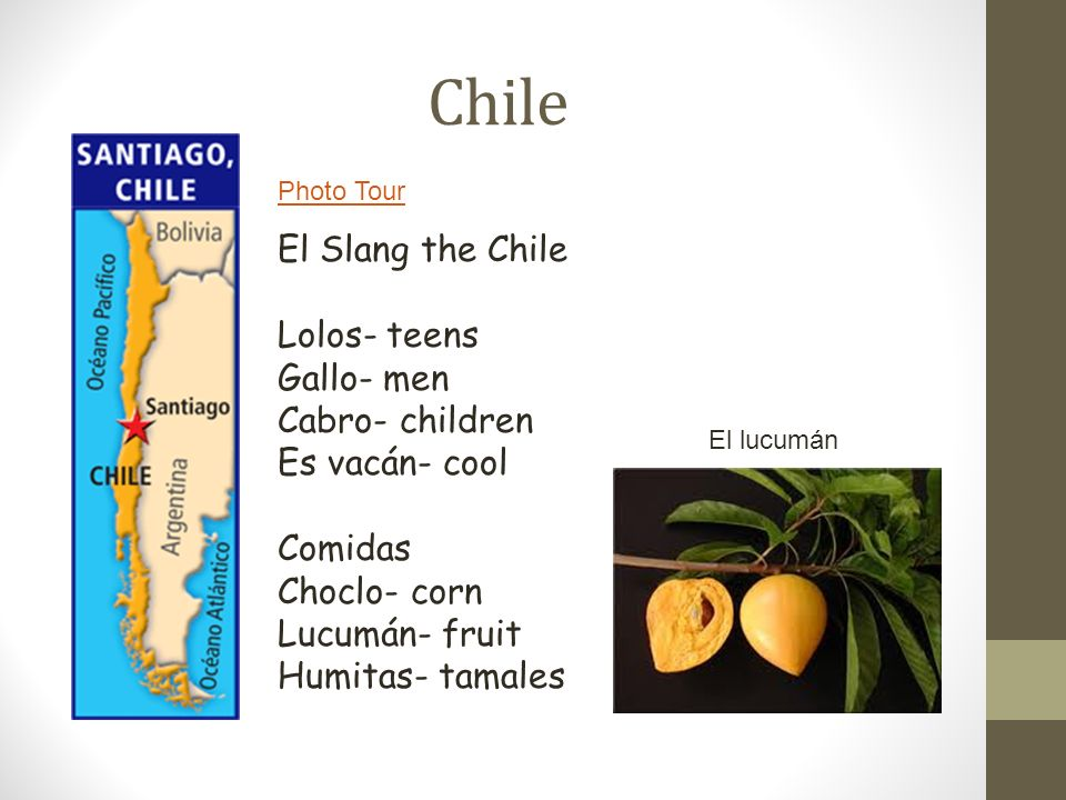 Chile El Slang the Chile Lolos- teens Gallo- men Cabro- children