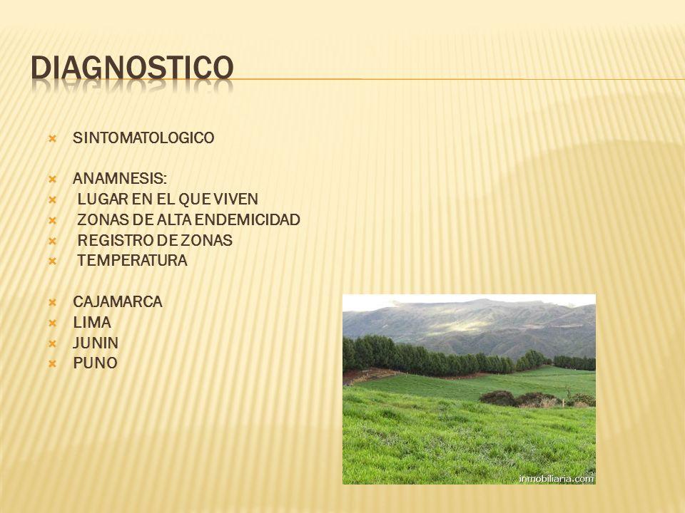 DIAGNOSTICO SINTOMATOLOGICO ANAMNESIS: LUGAR EN EL QUE VIVEN