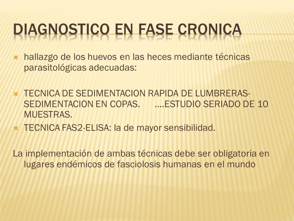 DIAGNOSTICO EN FASE CRONICA