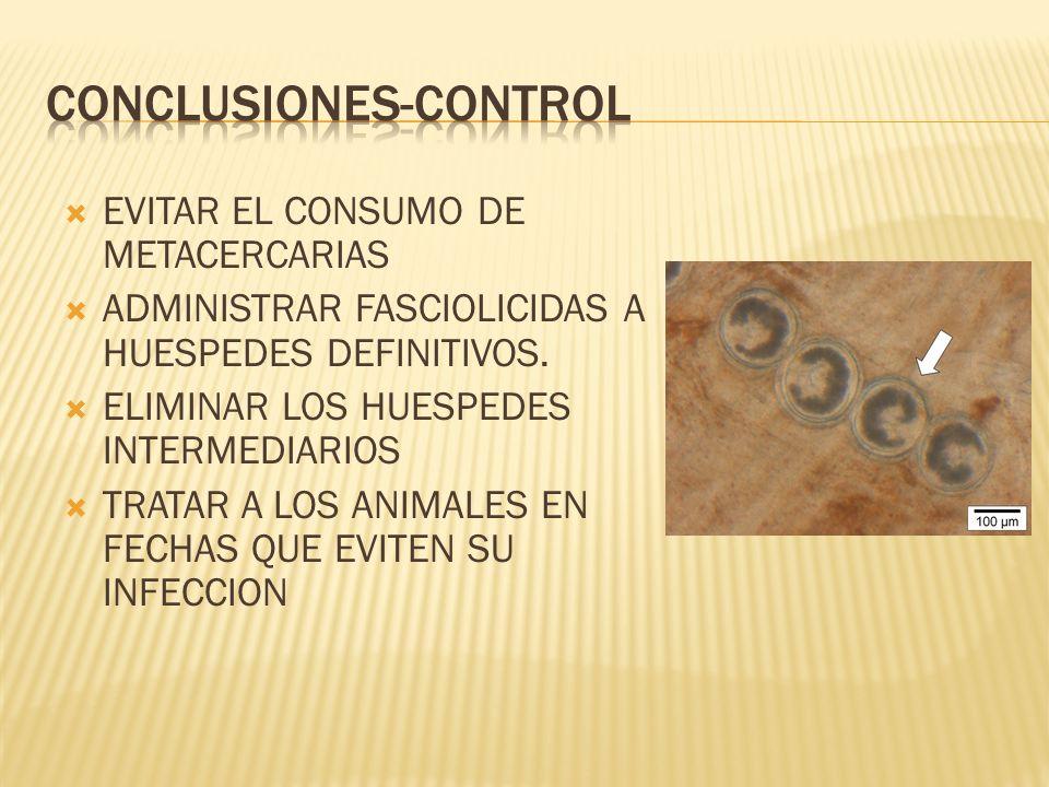 CONCLUSIONES-CONTROL