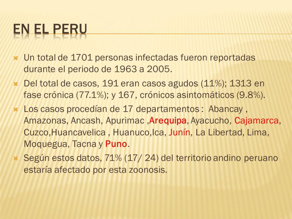 EN EL PERUUn total de 1701 personas infectadas fueron reportadas durante el periodo de 1963 a 2005.