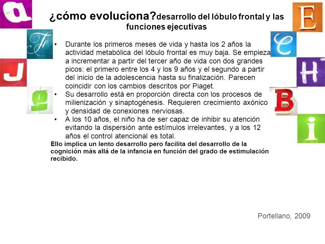 ¿cómo evoluciona desarrollo del lóbulo frontal y las funciones ejecutivas