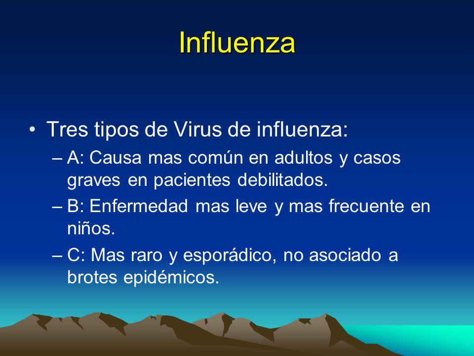 Influenza Tres tipos de Virus de influenza: