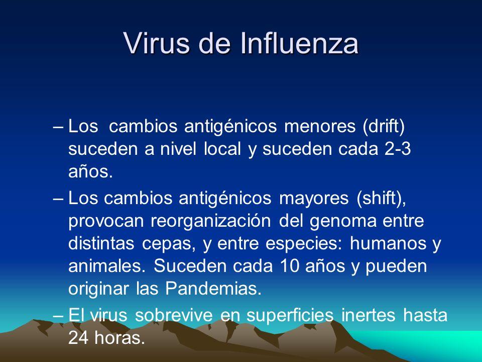 Virus de Influenza Los cambios antigénicos menores (drift) suceden a nivel local y suceden cada 2-3 años.
