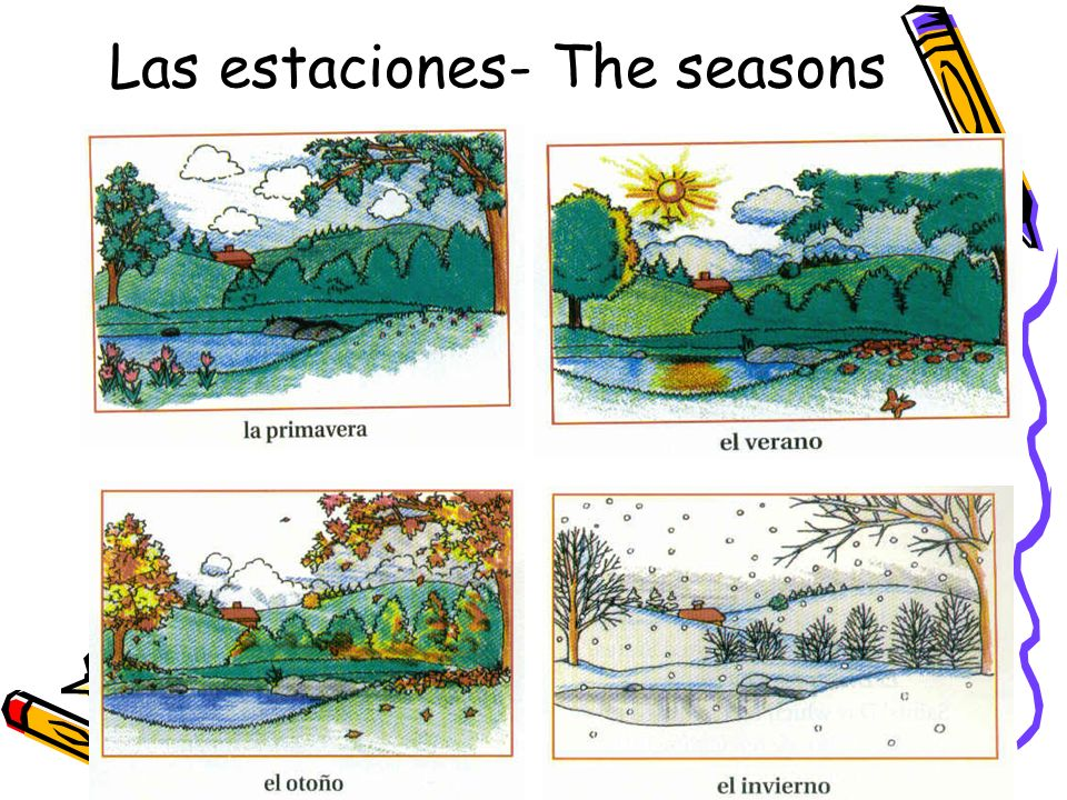 Las estaciones- The seasons
