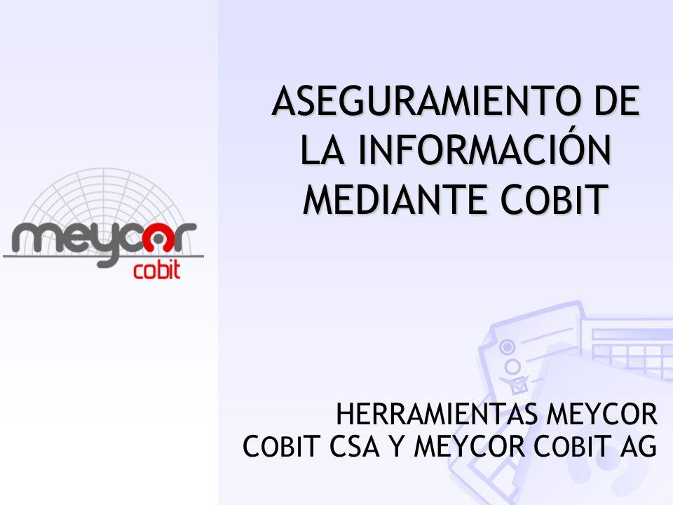 ASEGURAMIENTO DE LA INFORMACIÓN MEDIANTE COBIT