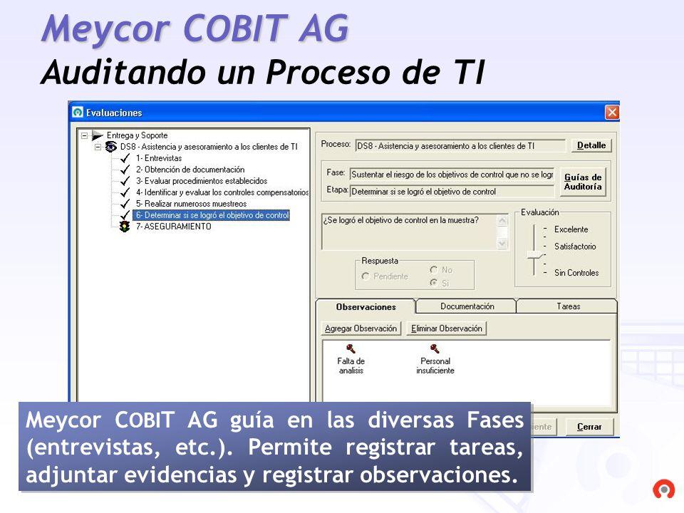 Meycor COBIT AG Auditando un Proceso de TI