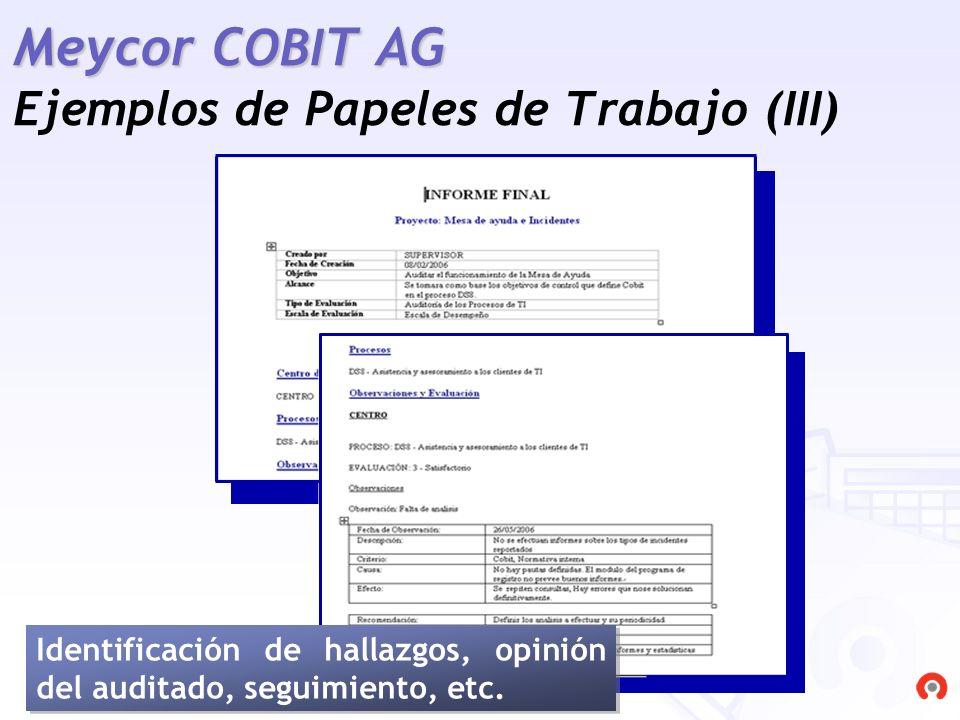 Meycor COBIT AG Ejemplos de Papeles de Trabajo (III)