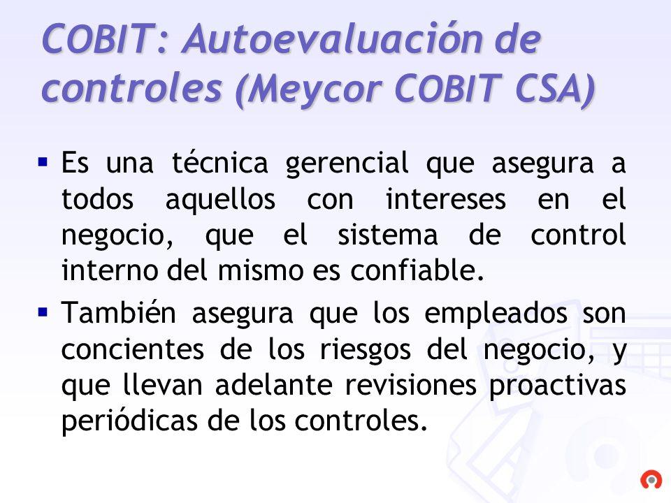 COBIT: Autoevaluación de controles (Meycor COBIT CSA)