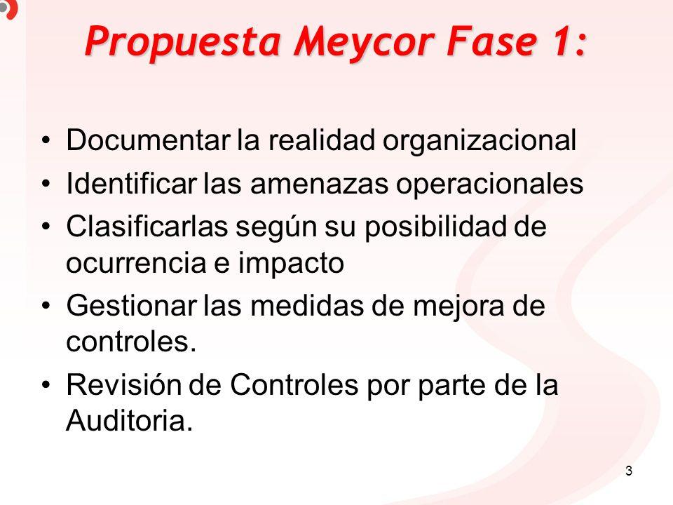 Propuesta Meycor Fase 1: