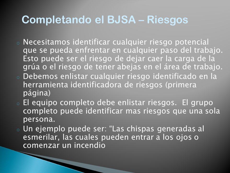 Completando el BJSA – Riesgos