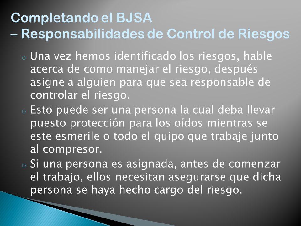 – Responsabilidades de Control de Riesgos