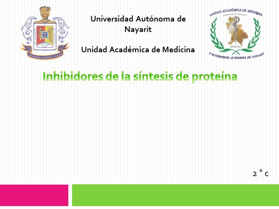 Inhibidores de la síntesis de proteína