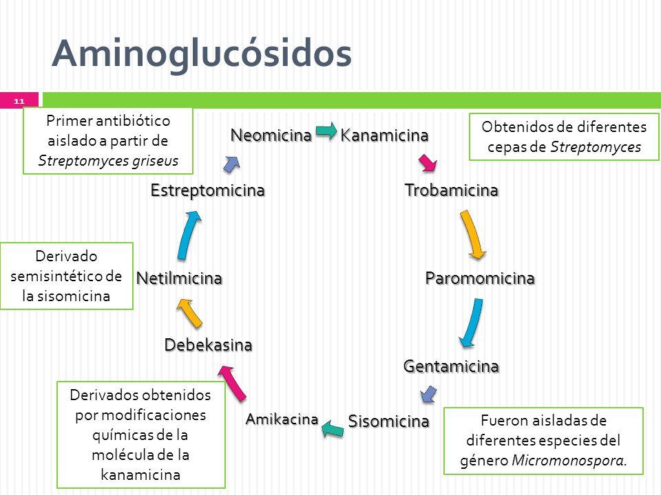 Aminoglucósidos Kanamicina Trobamicina Paromomicina Gentamicina