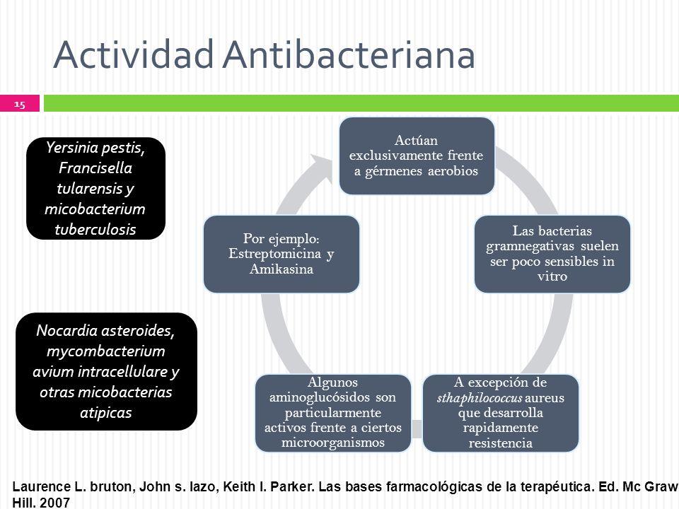 Actividad Antibacteriana