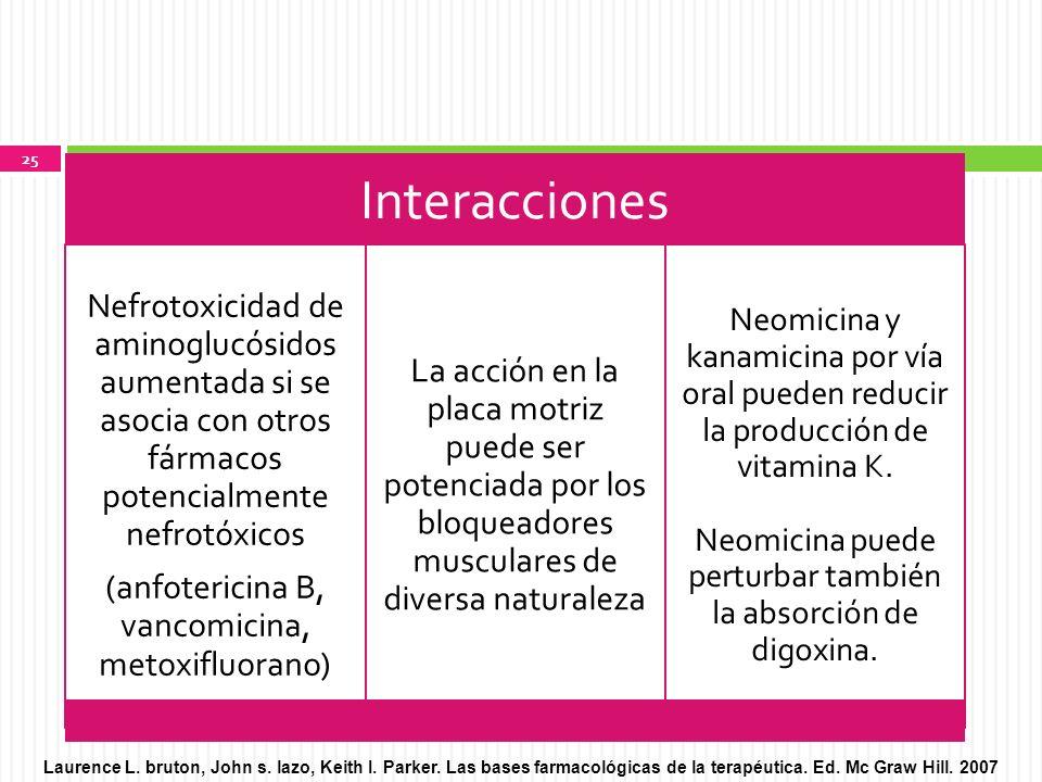 (anfotericina B, vancomicina, metoxifluorano)