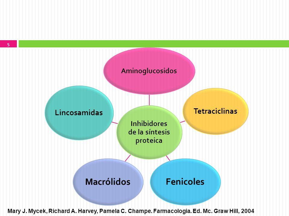 Inhibidores de la síntesis proteica