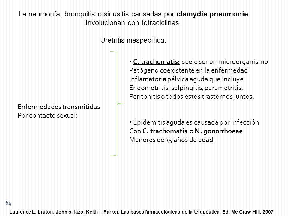La neumonía, bronquitis o sinusitis causadas por clamydia pneumonie