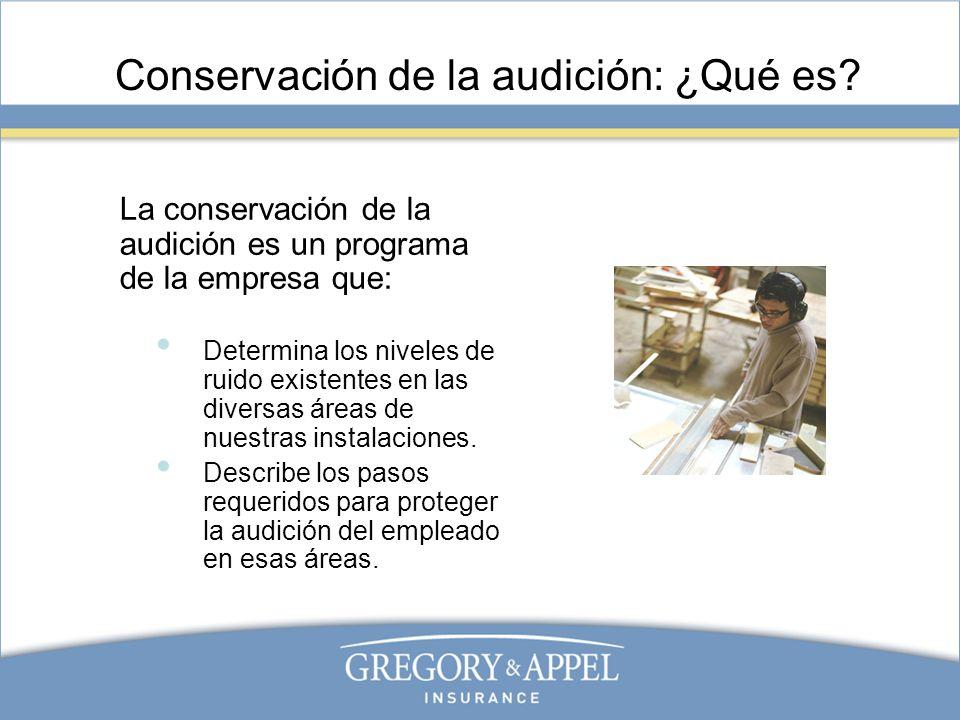 Conservación de la audición: ¿Qué es