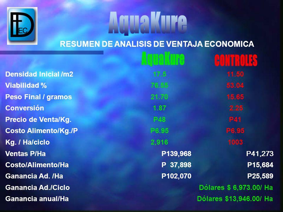 RESUMEN DE ANALISIS DE VENTAJA ECONOMICA
