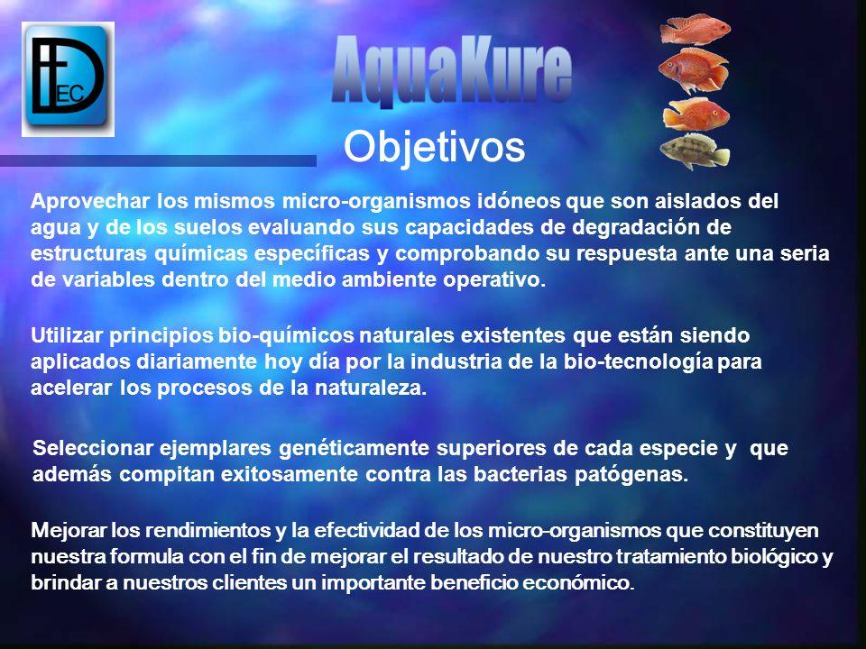 AquaKure Objetivos.