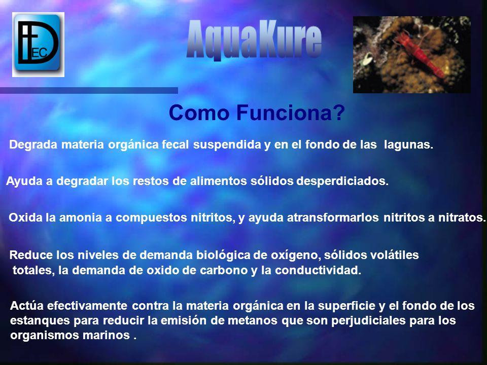 Como Funciona AquaKure