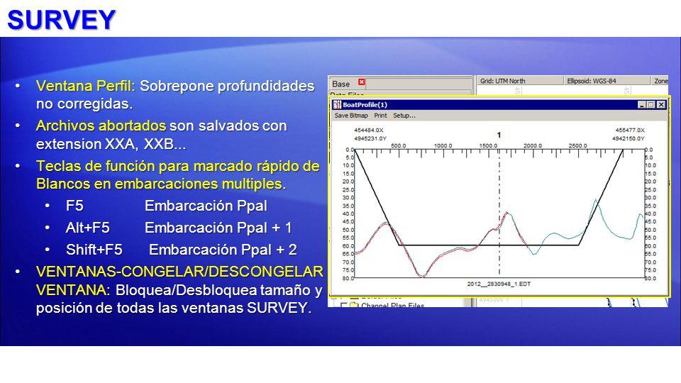 SURVEY Ventana Perfil: Sobrepone profundidades no corregidas.