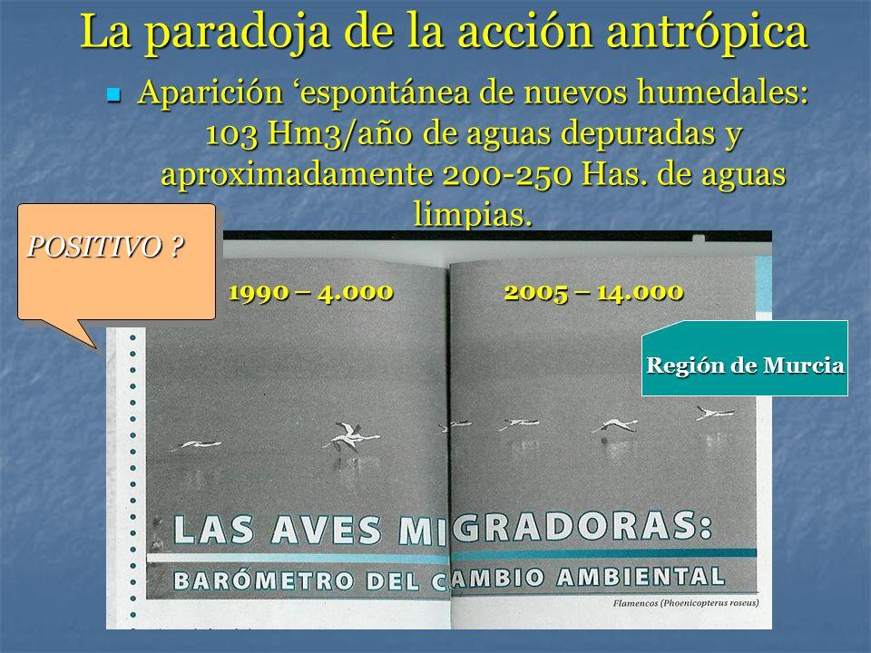 La paradoja de la acción antrópica