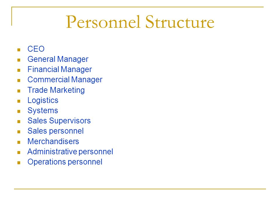 Personnel Structure CEO General Manager Financial Manager