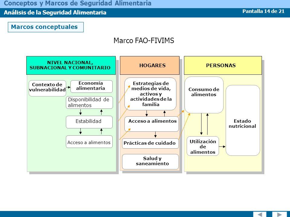 Marco FAO-FIVIMS Marcos conceptuales HOGARES PERSONAS