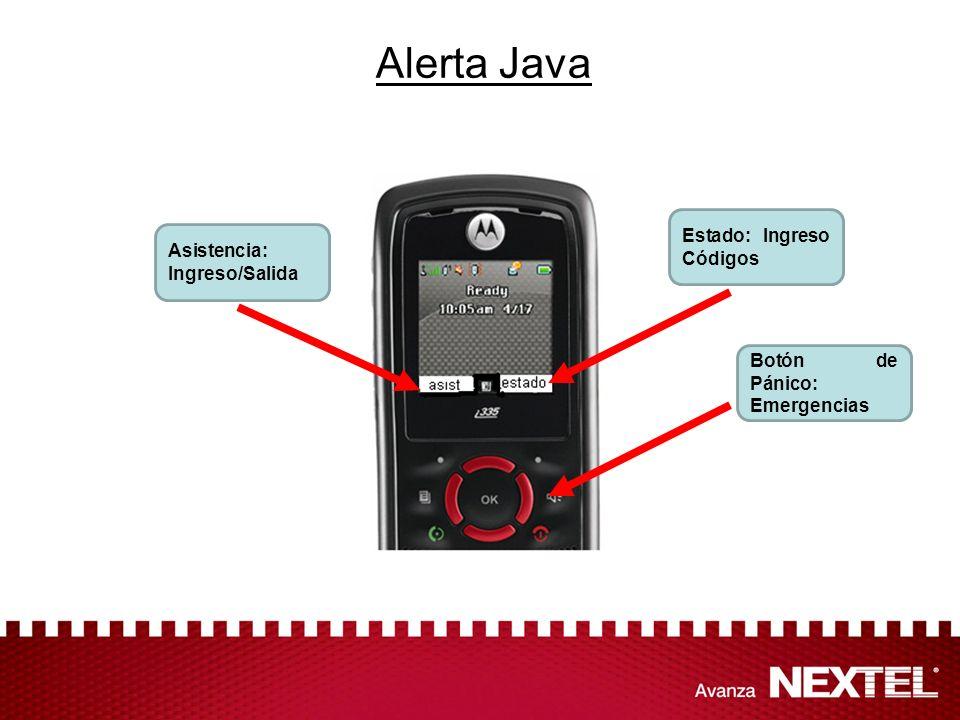 Alerta Java Estado: Ingreso Códigos Asistencia: Ingreso/Salida