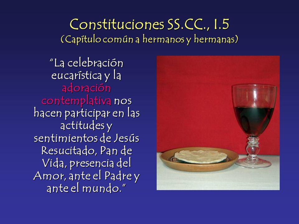 Constituciones SS.CC., I.5 (Capítulo común a hermanos y hermanas)