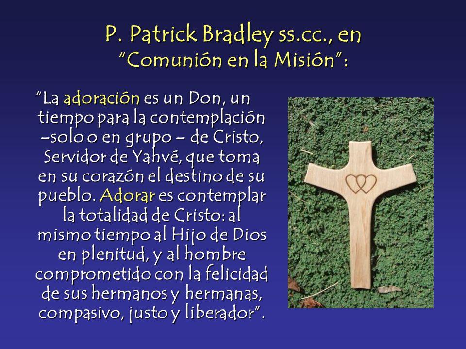 P. Patrick Bradley ss.cc., en Comunión en la Misión :
