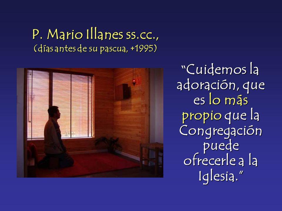 P. Mario Illanes ss.cc., (días antes de su pascua, +1995)