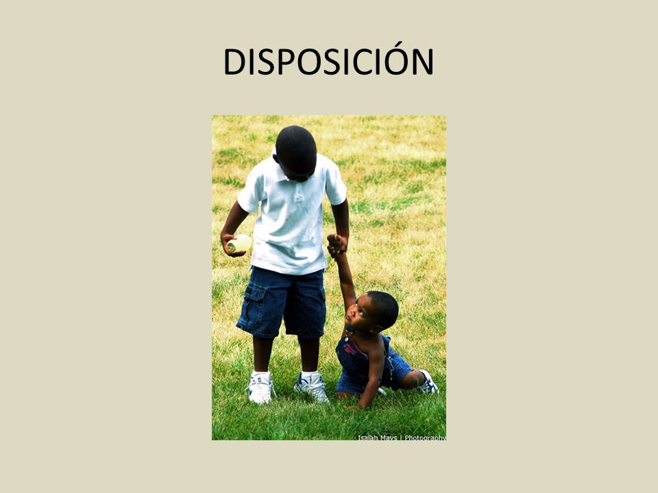 DISPOSICIÓN
