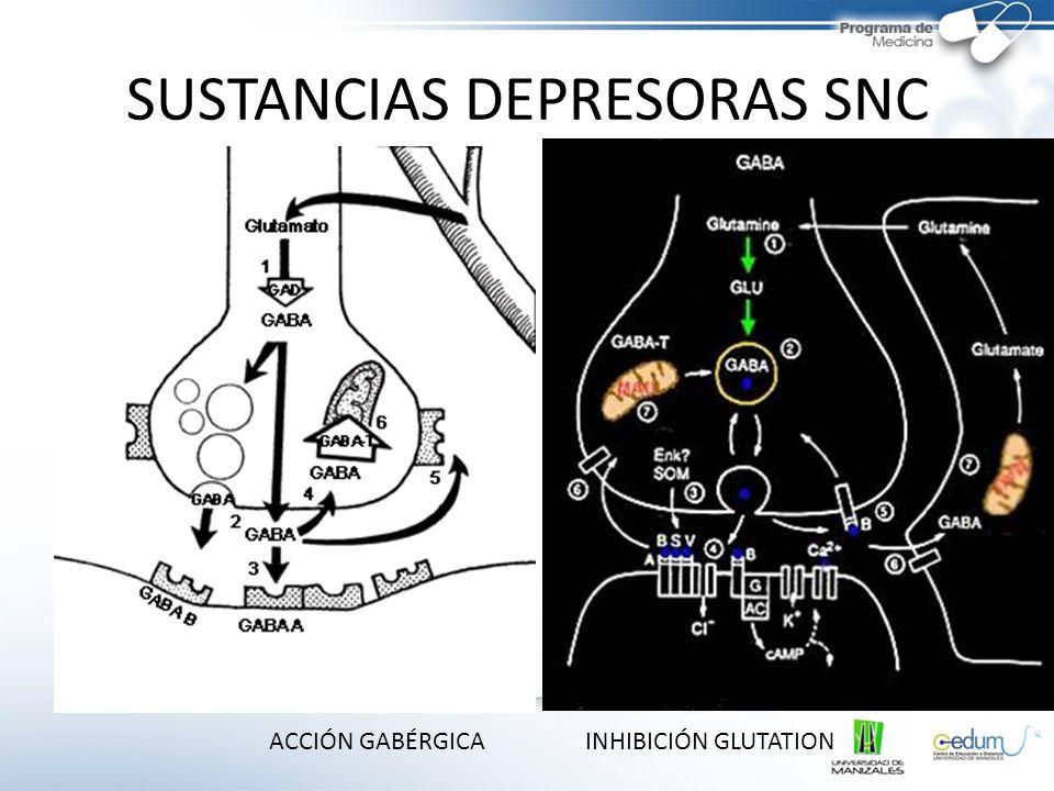 SUSTANCIAS DEPRESORAS SNC
