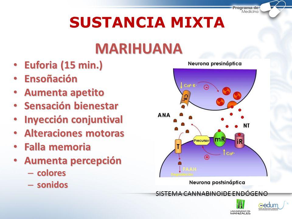 MARIHUANA SUSTANCIA MIXTA Euforia (15 min.) Ensoñación Aumenta apetito