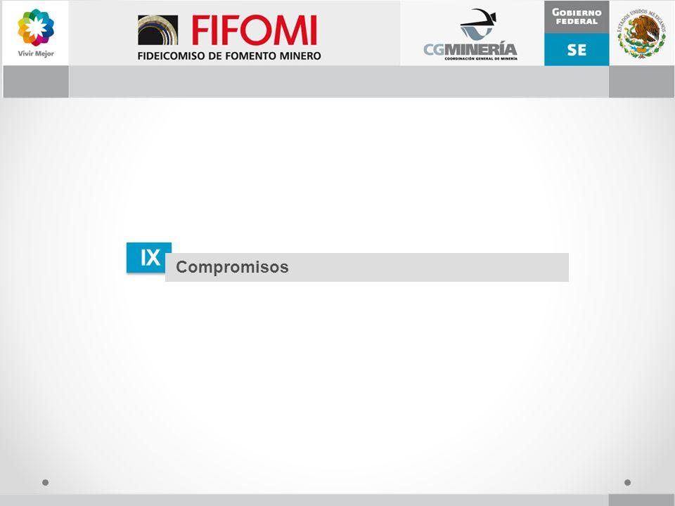 IX Compromisos