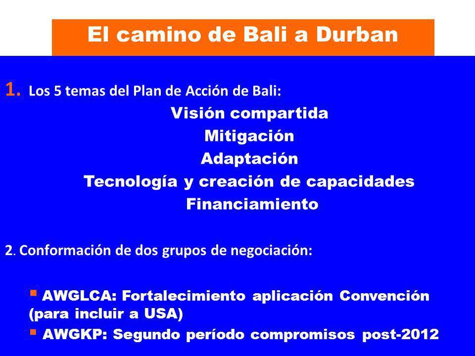 El camino de Bali a Durban Tecnología y creación de capacidades