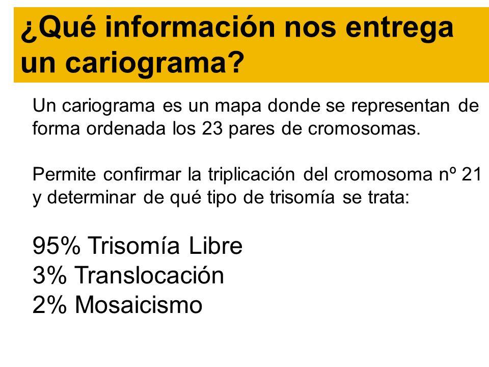 ¿Qué información nos entrega un cariograma