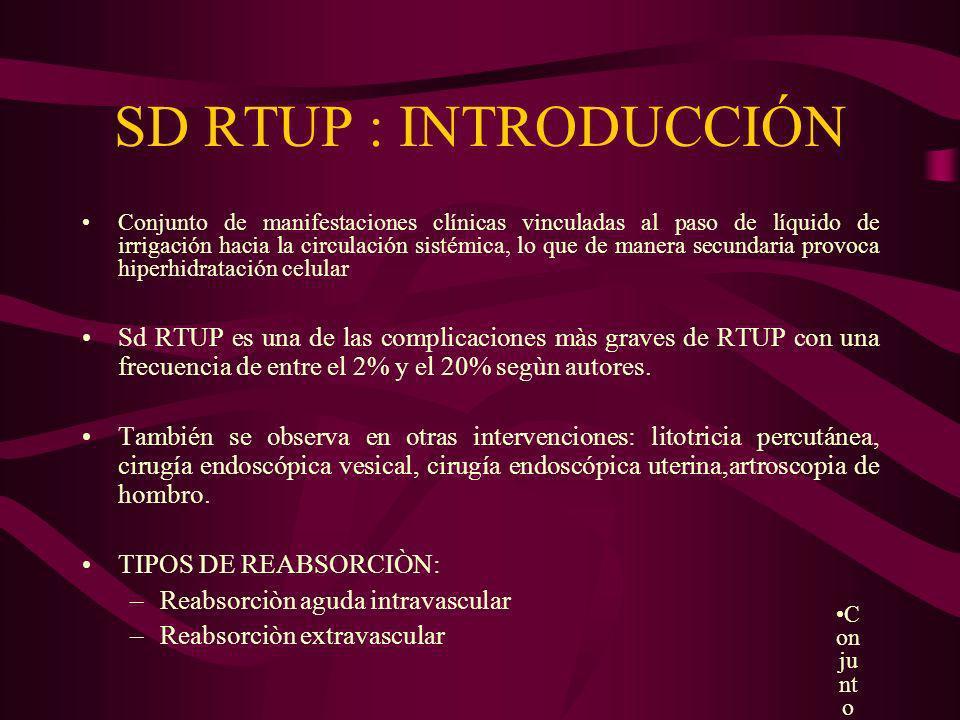 SD RTUP : INTRODUCCIÓN