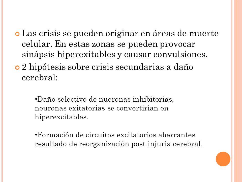 2 hipótesis sobre crisis secundarias a daño cerebral: