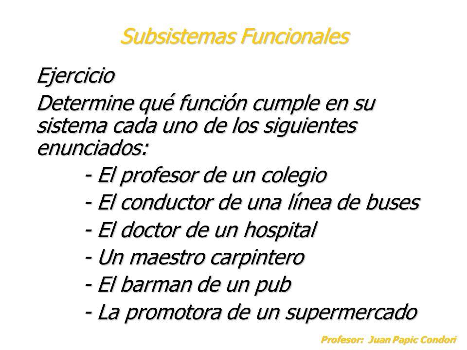 Subsistemas Funcionales