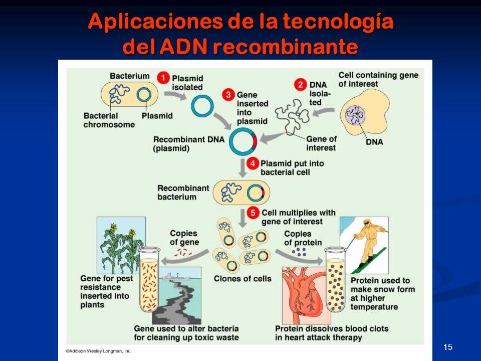 Aplicaciones de la tecnología del ADN recombinante