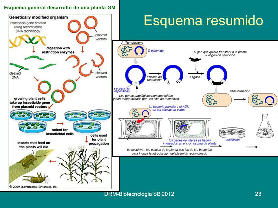 Esquema resumido DRM-Biotecnología SB 2012